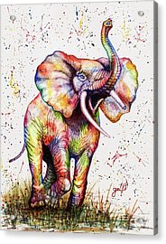 Acrylic Print featuring the painting Colorful Watercolor Elephant by Georgeta Blanaru