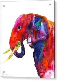 Colorful Watercolor Elephant Acrylic Print by Svetlana Novikova