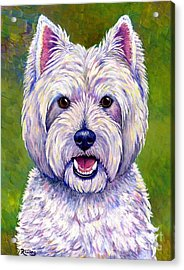 Colorful West Highland White Terrier Dog Acrylic Print