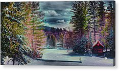 Acrylic Print featuring the photograph Colorful Winter Wonderland by David Patterson