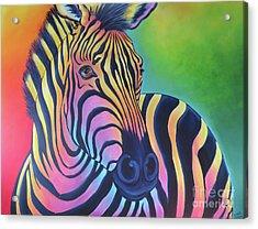 Colorful Zebra Acrylic Print