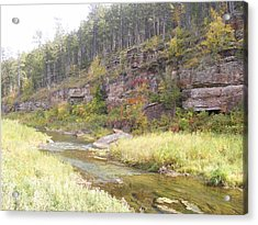 Coloring Brook Acrylic Print by Dennis Wilkins