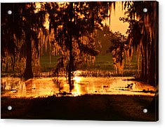 Coloring The Swamp With Sunrise Acrylic Print