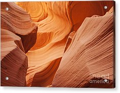 Colors Abound In The Canyon Acrylic Print by Ruth Jolly