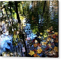 Colors Are Deeds And Sufferings Of Light Acrylic Print by Monika A Leon