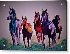 Colors In Wild Acrylic Print
