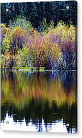Colors Of Autumn In May Acrylic Print by Russell  Barton