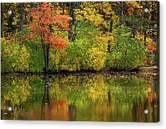 Colors Of Autumn Acrylic Print by Karol Livote