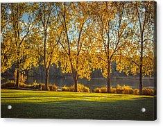 Colors Of Fall Acrylic Print by Mauricio Ricaldi