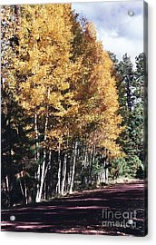 Acrylic Print featuring the photograph Colors Of Greer by Juls Adams