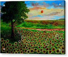 Sunflowers In Sunset Acrylic Print by Constantinos Charalampopoulos