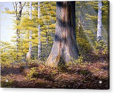 Colors Of Spring Acrylic Print by Conrad Mieschke