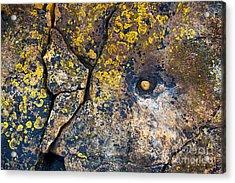Colors Of The Coast Acrylic Print