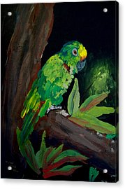 Colors Of The Parrot Acrylic Print by Michael Grubb