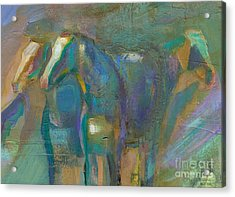 Colors Of The Southwest Acrylic Print by Frances Marino
