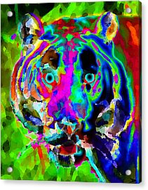 Colors Of The Tiger Acrylic Print