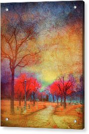 Colour Burst Acrylic Print