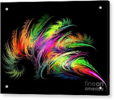 Colourful Feather Acrylic Print by Klara Acel