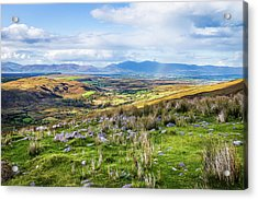 Colourful Undulating Irish Landscape In Kerry  Acrylic Print by Semmick Photo