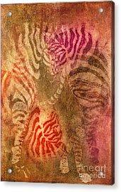 Colrfull Donkies Acrylic Print by Iglika Milcheva-Godfrey