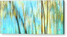 Acrylic Print featuring the photograph Columbia River Abstract by Theresa Tahara