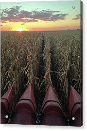 Combine Sunset V Acrylic Print