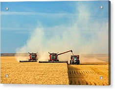 Combines And Tractor Working Together Acrylic Print by Todd Klassy
