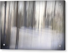 Come Away With Me Acrylic Print by Margaret Denny