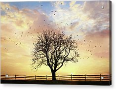 Acrylic Print featuring the photograph Come Fly Away by Lori Deiter