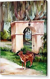 Come Out And Play Acrylic Print by Michael  Pearson