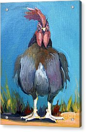 Comeback Chicken Acrylic Print