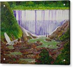 Comerio Dam Acrylic Print by Tony Rodriguez