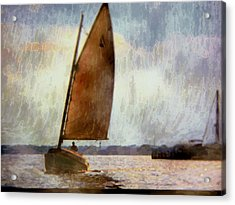 Coming In Close  Acrylic Print by Rick Todaro