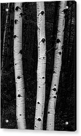 Acrylic Print featuring the photograph Coming Out Of Darkness by James BO Insogna