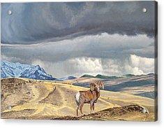Coming Rainstorm Acrylic Print