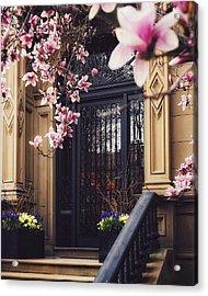 Comm Ave Spring Door Portrait Acrylic Print