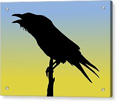 Common Raven Silhouette At Sunrise Acrylic Print