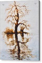 Como Lake Reflections Acrylic Print