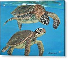 Companions Of The Sea Acrylic Print by Elaine Haakenson