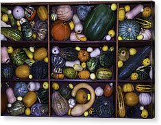 Compartments Of Gourds Acrylic Print