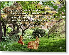 Compassion And Goodness Acrylic Print by Ruth Moratz