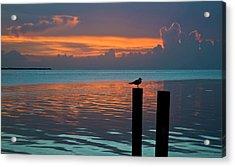 Conch Key Sunset Bird On Piling Acrylic Print