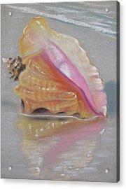 Conch On Beach Acrylic Print by Joan Swanson