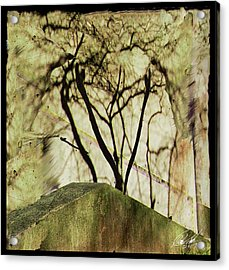 Concrete Jungle Acrylic Print