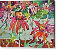 Cone Flowers And  Three Bands Acrylic Print