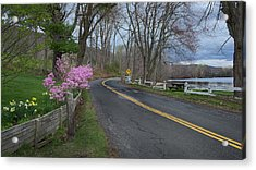 Acrylic Print featuring the photograph Connecticut Country Road by Bill Wakeley