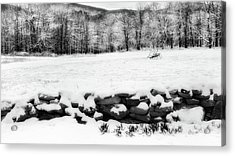 Connecticut Spring Snow 2016 Acrylic Print