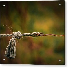 Acrylic Print featuring the photograph Connection by Odd Jeppesen