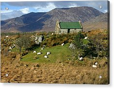 Connemara Cottage Ireland Acrylic Print by Pierre Leclerc Photography