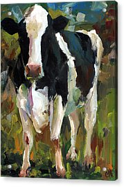 Connie The Cow Acrylic Print by Cari Humphry
